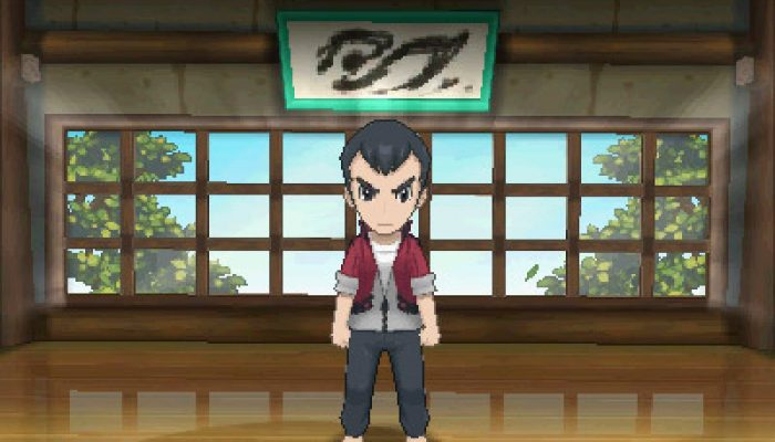 Pokémon ORAS – Gym Leaders, Normal-type Norman Art and Screenshots