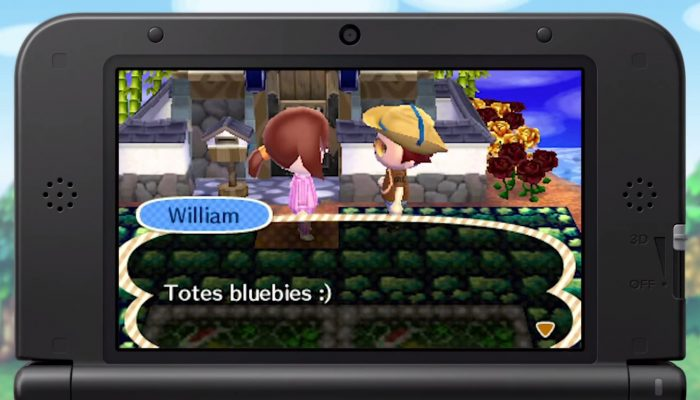 Animal Crossing: New Leaf – Nintendo Amy visits Miiverse with Dream Suite