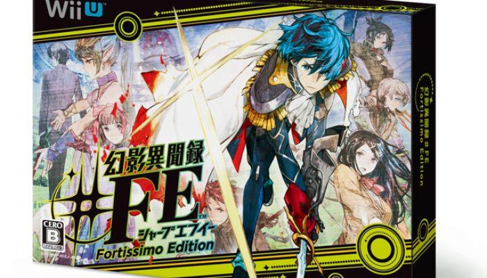 Shin Megami Tensei X Fire Emblem – Assets From Official Blog Post 28