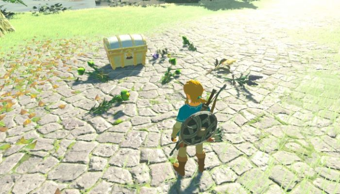 NoE: 'Check out what the new The Legend of Zelda: Breath of the Wild series amiibo can do in the upcoming game!'