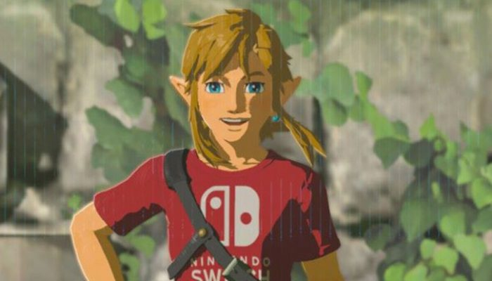 NoE: 'You can expand your adventure in The Legend of Zelda: Breath of the Wild with the Expansion Pass'