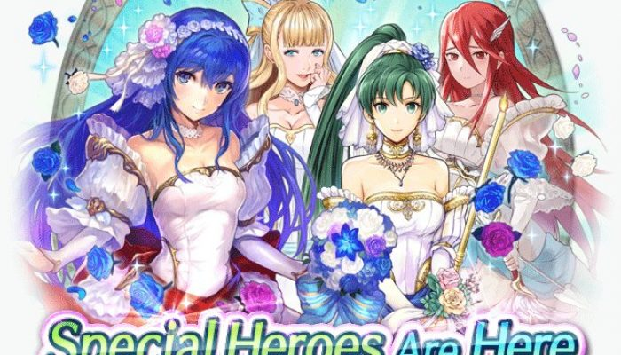 Waifus Caeda, Cordelia, Charlotte, and Lyn join Fire Emblem Heroes