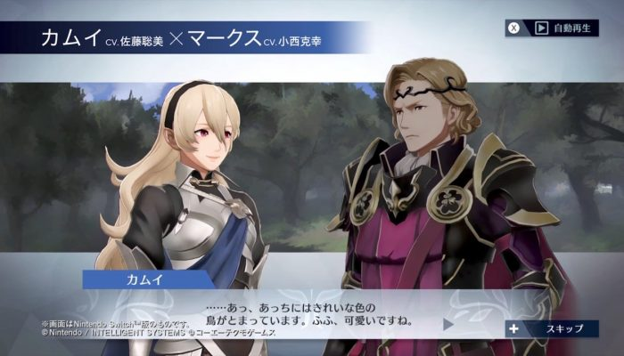 Fire Emblem Warriors – Japanese Female Corrin x Xander Support Conversation