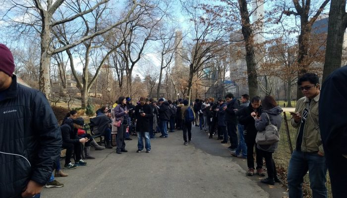 Pictures of the January Pokémon Go Community Day