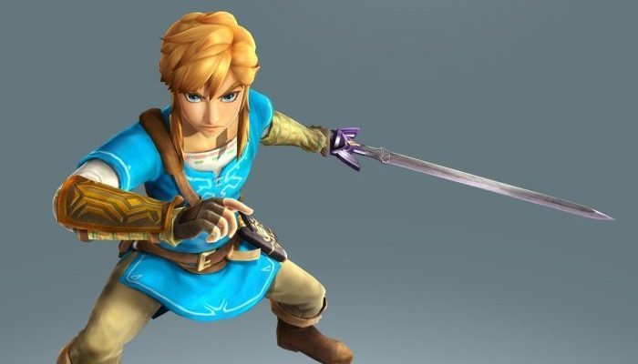 Another look at the Breath of the Wild theme outfits in Hyrule Warriors Definitive Edition