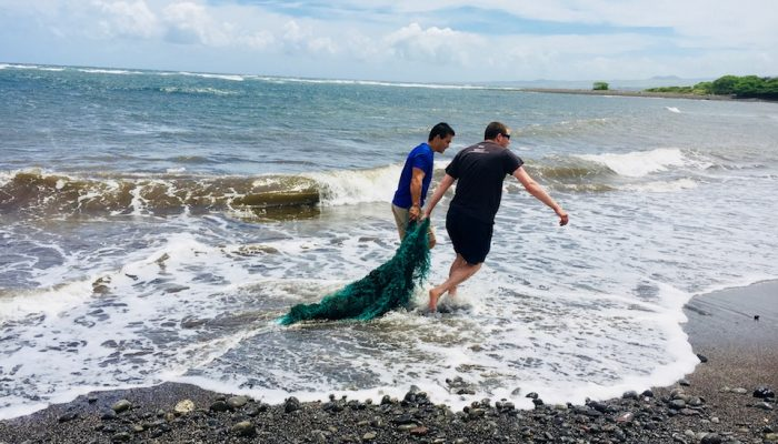 Niantic Labs: 'Celebrating World Oceans Day with Impact'