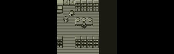Pokémon Trainer Spotlight
