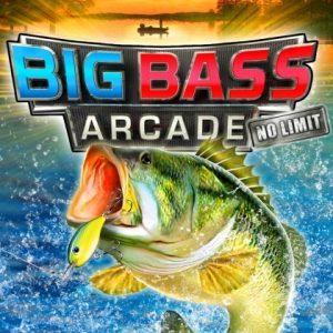 Nintendo eShop Downloads Europe Big Bass Arcade No Limit