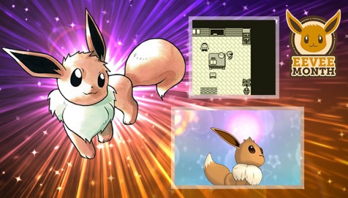 Pokémon: 'Eevee's Remarkable Recruitments'