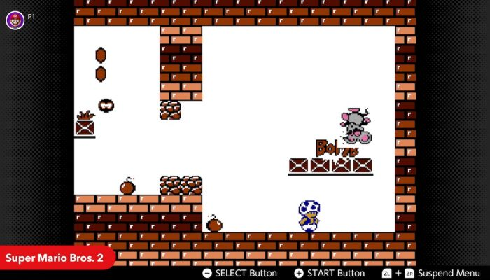NES Nintendo Switch Online – February Game Updates