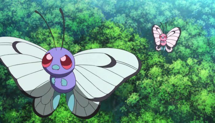 Pokémon – La Saint-Valentin : un amour qui se sent pousser des ailes!