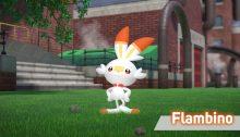 Pokémon Épée Bouclier