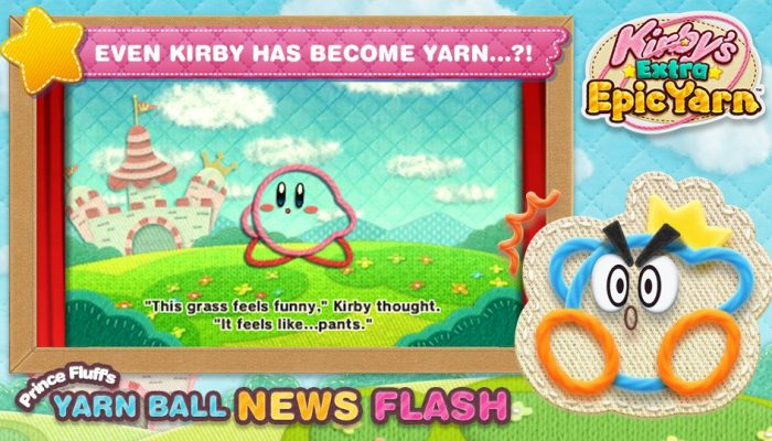 Introducing Prince Fluff's Yarn Ball News Flash