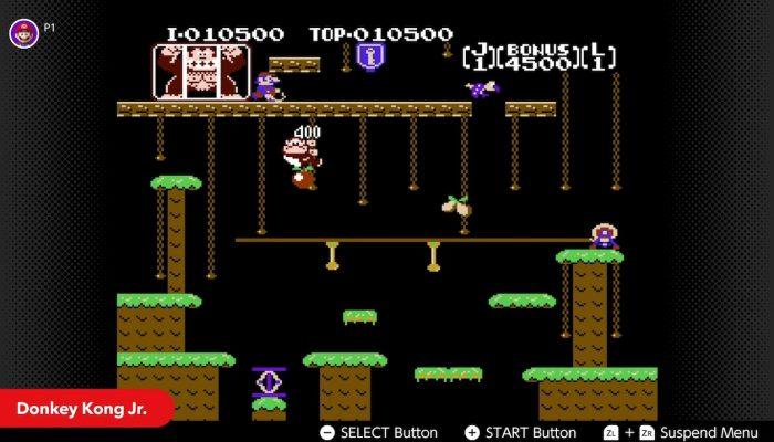 NES Nintendo Switch Online – May Game Updates