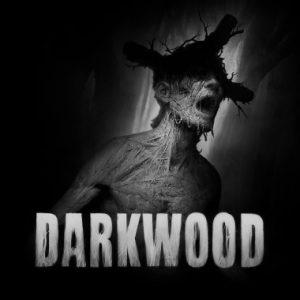 Nintendo eShop Downloads Europe Darkwood
