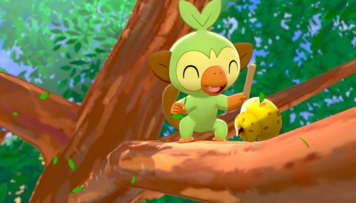 Pokémon Sword & Shield: 'Grookey'