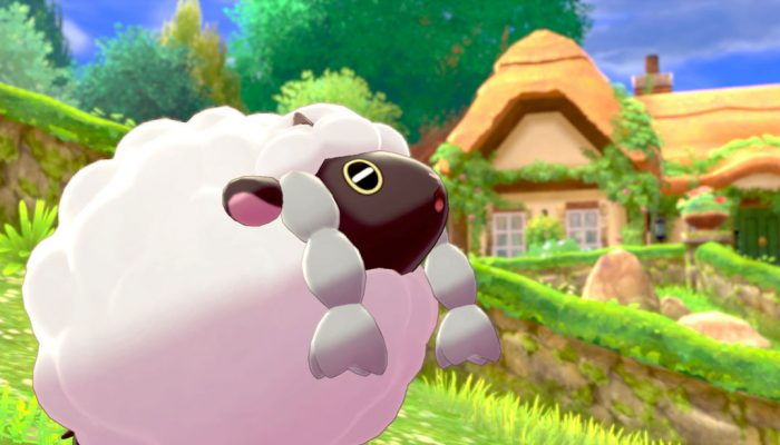Pokémon Sword & Shield: 'Wooloo'