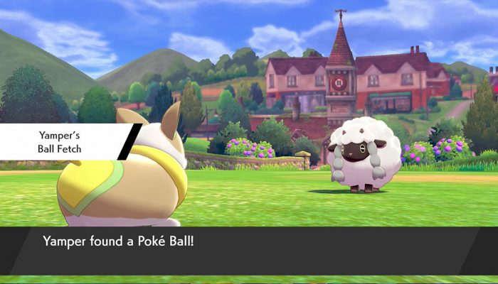 Pokémon Sword & Shield: 'Yamper'