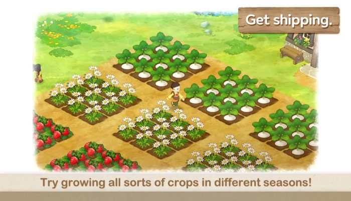 Doraemon Story of Seasons – How To Take Care Of Your Crops