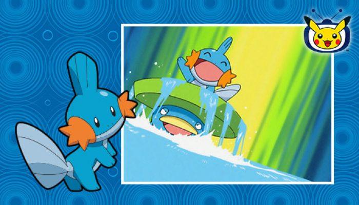 Pokémon: 'Watch Mudkip in Pokémon the Series on Pokémon TV'