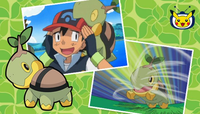 Pokémon: 'Watch Turtwig in Pokémon the Series on Pokémon TV'